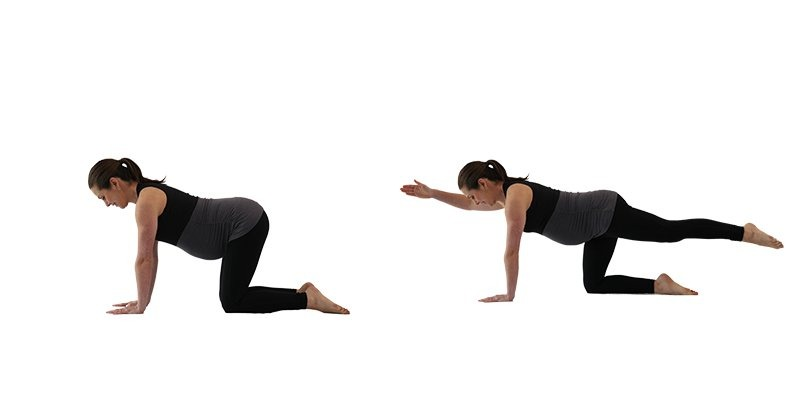 Prenatal exercise elbow to knee you can do at home or online