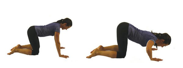 this is how to perform modified push ups when pregnant